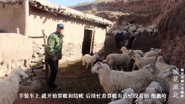 甘肃古浪西北山区移民卖羊,左手拎来右手牵,全都装在了三轮车上