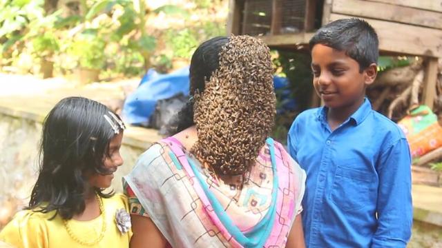 密恐慎点!印度女子让数百蜜蜂爬满脸:没必要怕这些小虫子