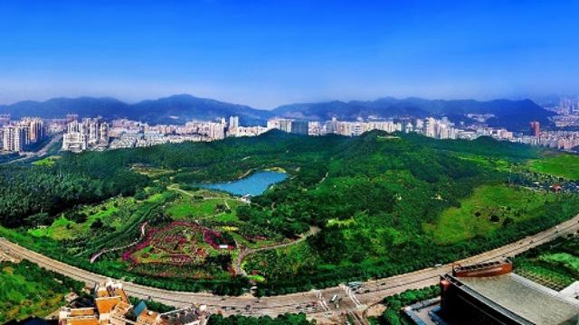 深圳照片 风景图片
