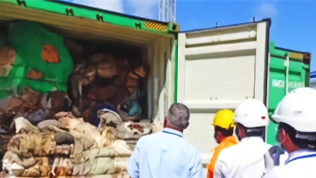 拒收英国垃圾!斯里兰卡宣布退还111箱垃圾 还包含人体器官