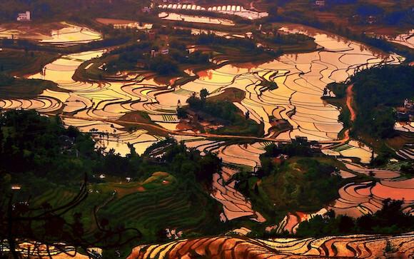 快来看看有没有你家乡 重庆这9村入选首批全国乡村旅游重点村