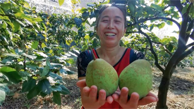 重庆农村大妈外出打工20多年,回乡直播卖农货年入百万