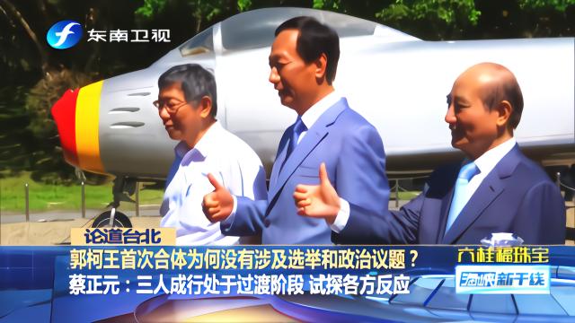 郭柯王首次会面没有涉及选举和政治议题,原来有这些考虑
