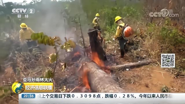 """亚马孙雨林大火,雨林被""""烧焦"""",大量烟雾带来""""呼吸之痛"""""""