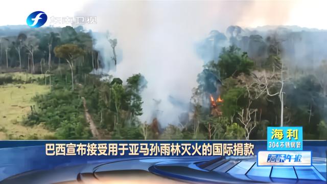 巴西宣布接受用于亚马孙雨林灭火的国际捐款