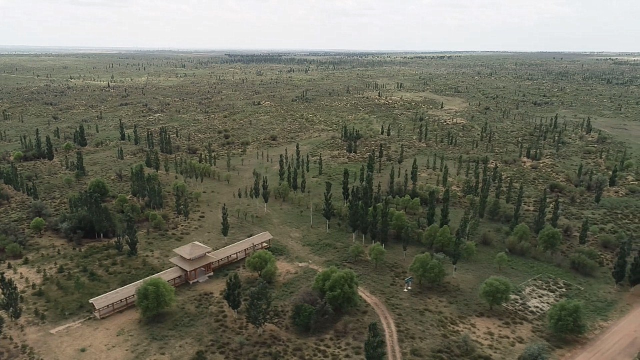 """给沙漠穿上""""绿衣""""!揭秘新型沙障铺就科技治沙路"""