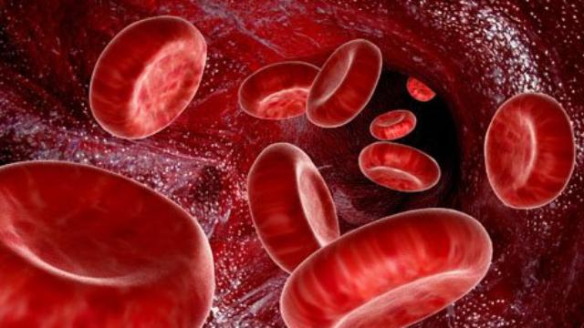 疾病科普 第十期 贫血
