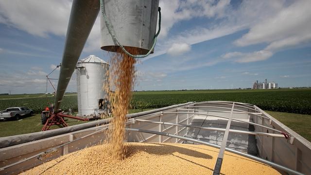 关于中美贸易战,大豆可以告诉你什么?