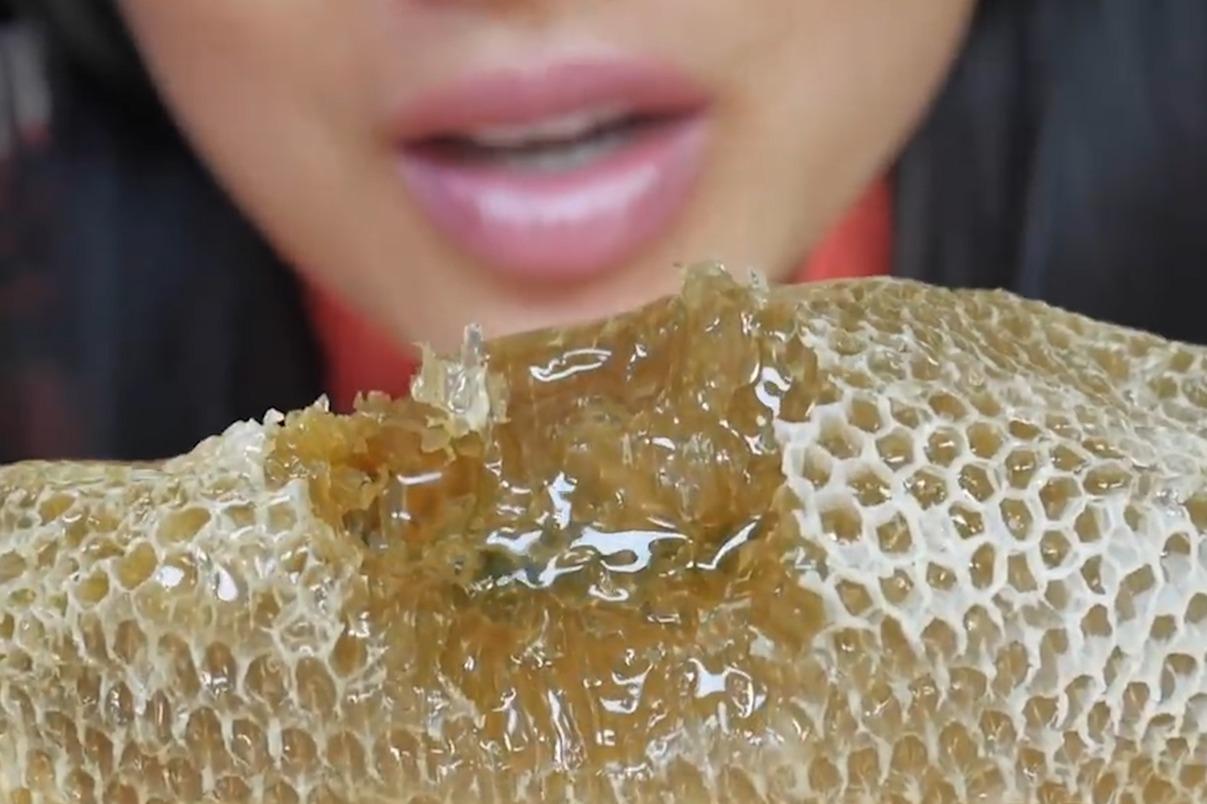小姐姐体验美食,野生的蜂巢蜜,看着就很好吃