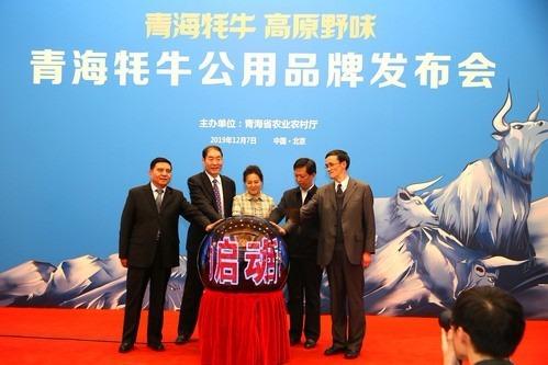 青海牦牛公用品牌发布会在京举行