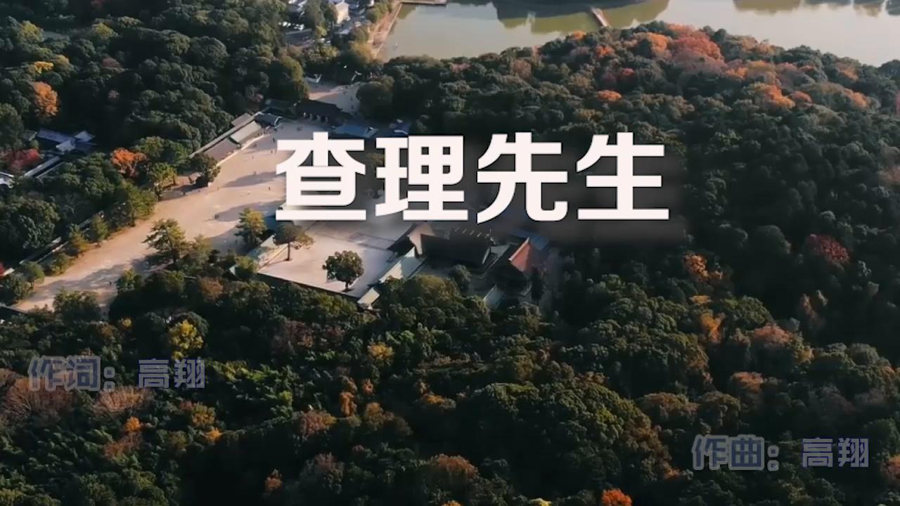 高翔与面粉乐队《查理先生》MV饭制版