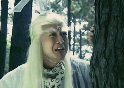 """57岁孙兴近照曝光,留长发蓄胡须,""""最帅杨逍""""与昔日判若两人"""
