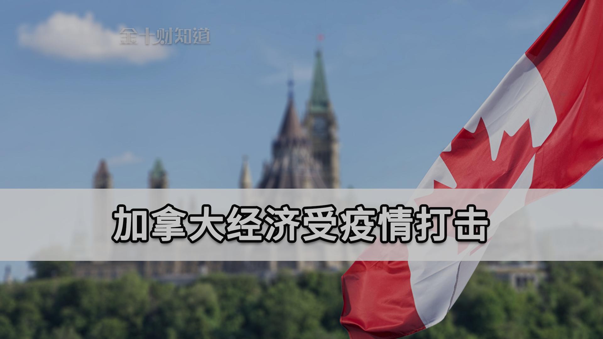 俄罗斯近2万吨油菜籽来华!加拿大经济受疫情打击,如今想到中国