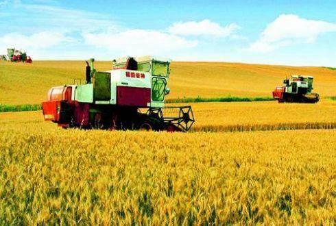 乡村振兴战略实施元年 多项农业农村改革政策正孕育
