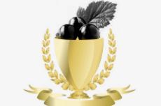 黑加仑奖| 2018年十大违规A股公司评选开启 点击投票