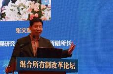 张文魁:破解混改悖论在于引入非国有积极股东