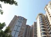 广州5月获预售住宅套数大降七成 房企:预售证发放放缓