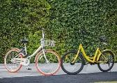 共享单车:自发秩序是如何发生的