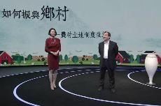 刘守英:土地制度该何改革,才能让乡村焕发生机?