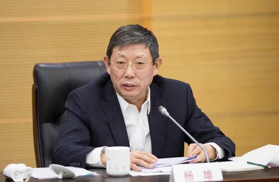 杨雄辞去上海市人民政府市长职务(图/简历)