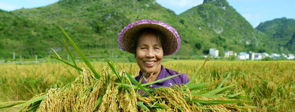 """藏不住的喜悦绽放在脸上 庆祝首个""""中国农民丰收节"""""""