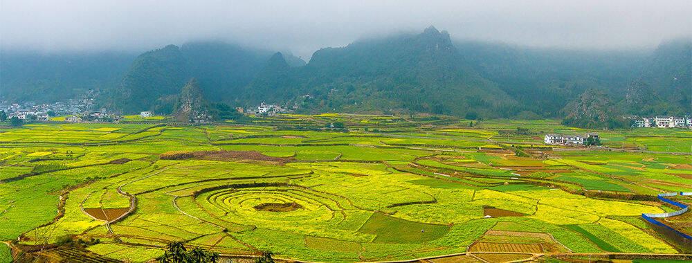 """藏在黔西南的""""百花之城"""",寒冬绽放出的绝美春色 大美中国"""