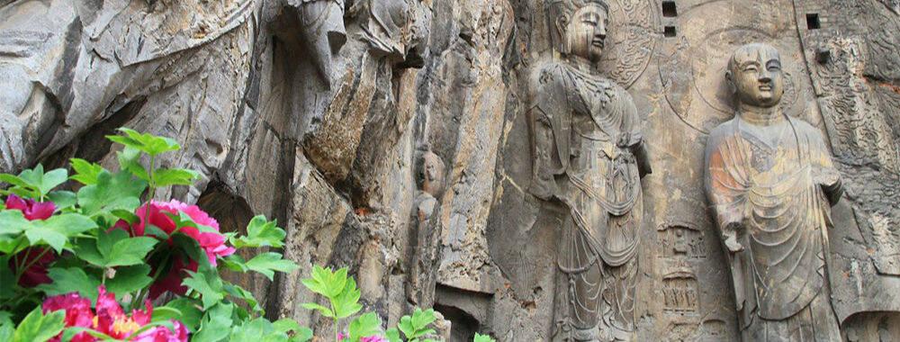 花开时节探访洛阳 遍地古迹中品读古都独特魅力|大美中国