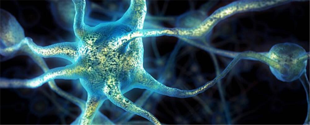 最新发现:大脑工作处理能力有限 别想一心二用
