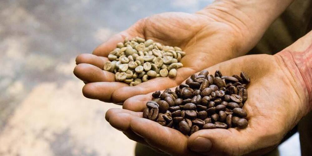 新西兰的咖啡