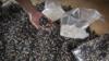中国禁止洋垃圾令日本很受伤 全球废塑料失去归宿