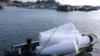 福建碳九泄露致渔民损失百万!碳九究竟是什么?