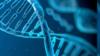 """国家卫健委回应""""基因编辑婴儿""""事件:高度重视"""