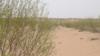 形成于唐朝的沙漠,就要被消灭了!