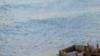 """日本海岸再现大量""""幽灵船"""" 仅11月就漂来33艘"""