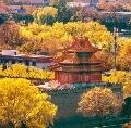 秋天,一定要去北京
