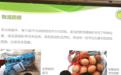 16家线上生鲜平台哪家最靠谱?上海市消保委评测结果出炉