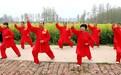 亳州谯城区:油菜花开满地黄 美丽乡村展新颜