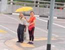 """这位中国姑娘在新加坡的一个小举动 把网友""""暖化了"""""""