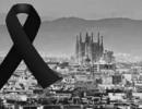 突发!西班牙巴塞罗那发生恐怖袭击事件|小南早报