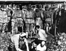 南京大屠杀逝者30万,抗日战争逝者1800万,二战逝者7000万:这就是他妈的战争