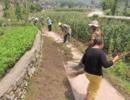 春节后国家将发力整顿农村这个大问题,涉及到每个农民的利益!