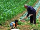 2018年农民要遇到3个危机,第1和第3谁都逃不掉,农民要早做打算