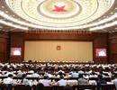 全国人大常委会:天津滨海新区违法企业统计数据虚报竟高达56倍