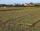 专家鼓励农民退土地,每亩从4万涨到10万,农民撇嘴:这就该退?