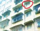 贵州3岁宝宝从5楼坠下被人接住生还 施救邻居重伤