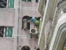 男童站5楼边眼看要坠楼 装修工从6楼爬水管纵身相救