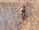 郑州11岁男孩拿破衣服只身扑灭山火