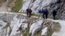 视频:8名游客用棍子围堵野猪 将其逼下悬崖