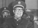 1970年毛泽东意味深长地说了什么 救了聂荣臻一命