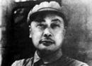 为何有人对是否授予陈毅元帅军衔存不同意见?